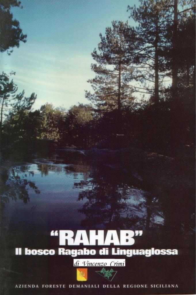 Pineta Ragabo vol. 1