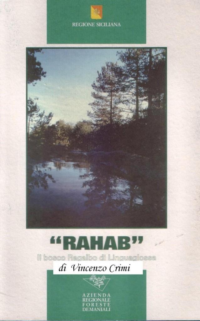 Ragabo2